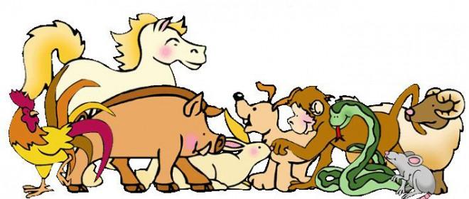 Medicamentos en veterinaria